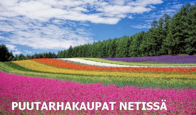 puutarhakaupat netissä